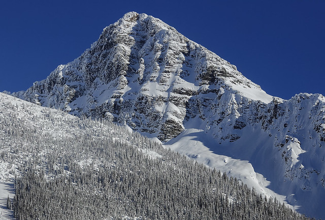Mountain at Rogers pass