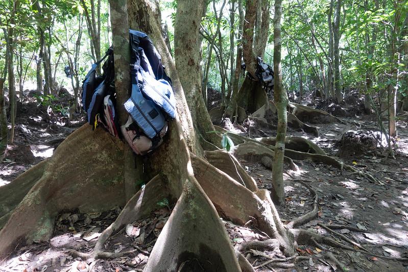 ライフジャケットを木に引っ掛ける