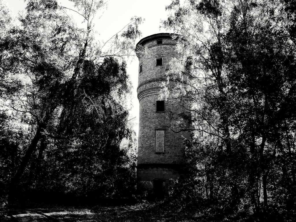 Abandoned tower in forest