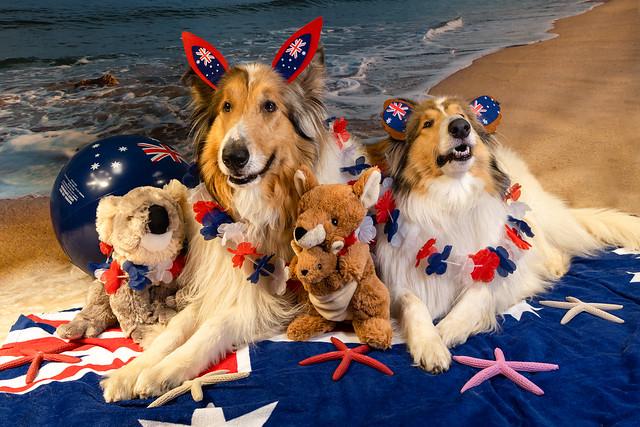 Happy Australia Day 26th January