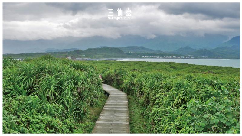 台東海線三仙台-13
