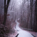 tomageorgian40 posted a photo:Print Photography Winter Forest Road