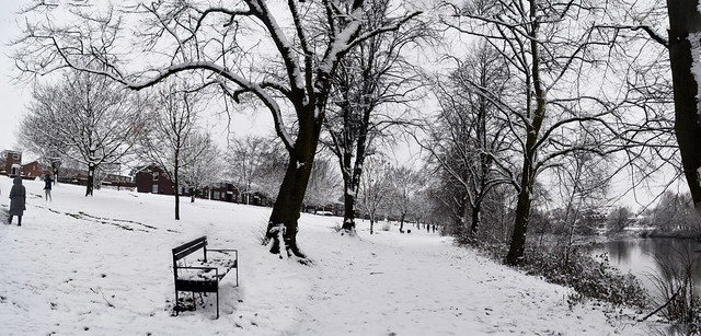 Brookvale Park