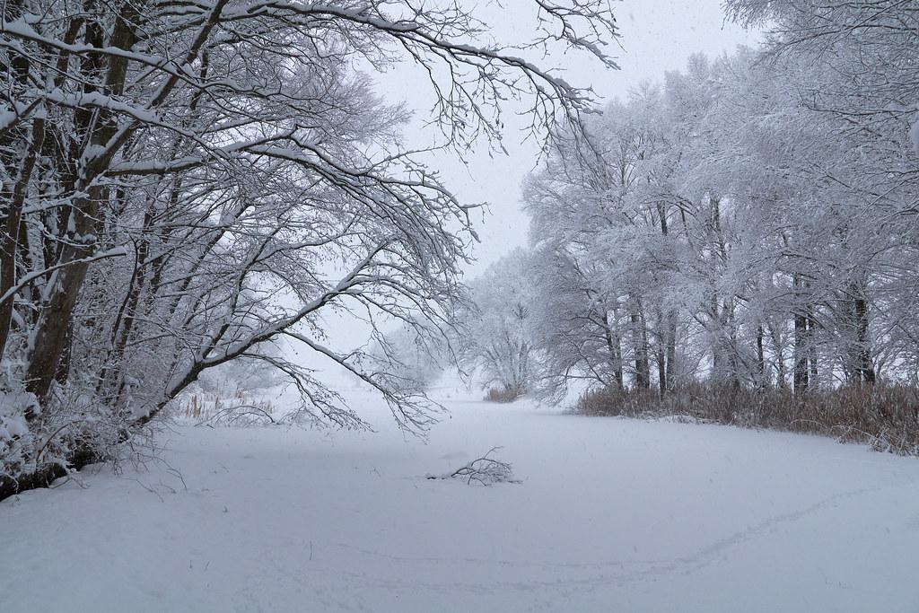 Schneefall in der Gaisau - Inzing / Tirol