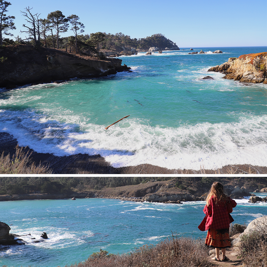 impossible-to-capture-the-beauty-of-point-lobos