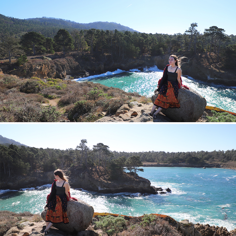 beauty-in-point-lobos
