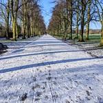 Snowy Haslam Park