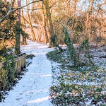 Winter at Haslam Park, Preston