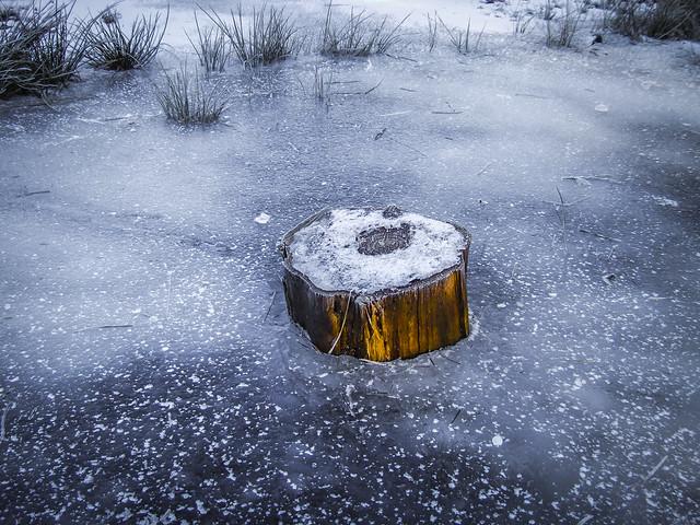 Eingefroren Frozen