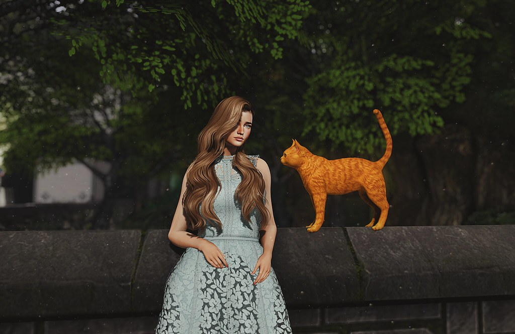 Posing with cats