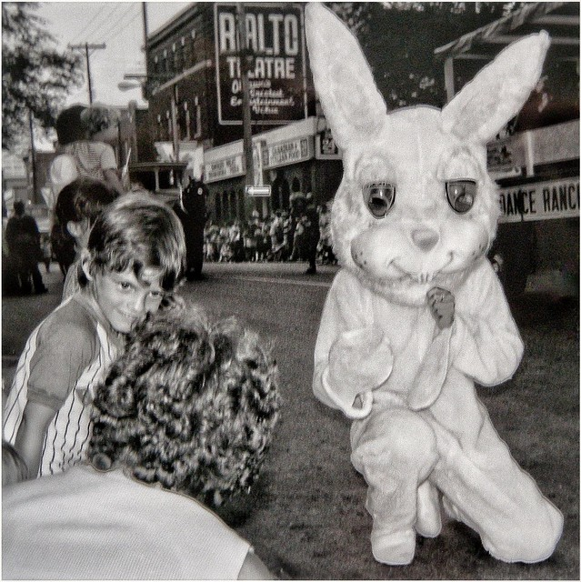 the bunny told me so...1978