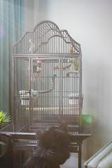 Milo+Neville
