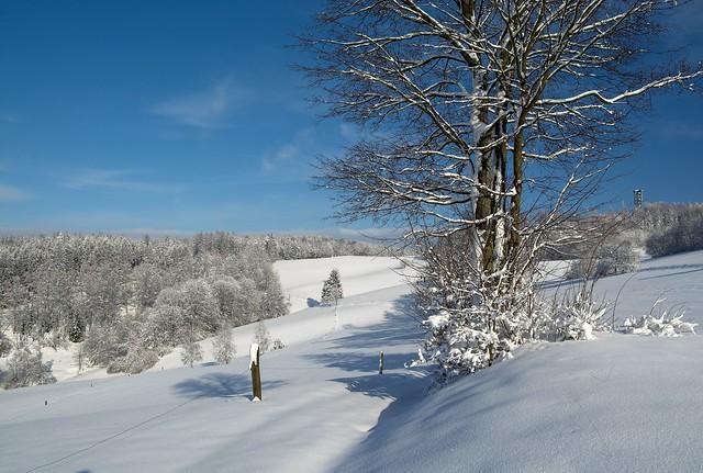 Heute in der Sächsische Schweiz.