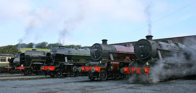 Steam On Shed