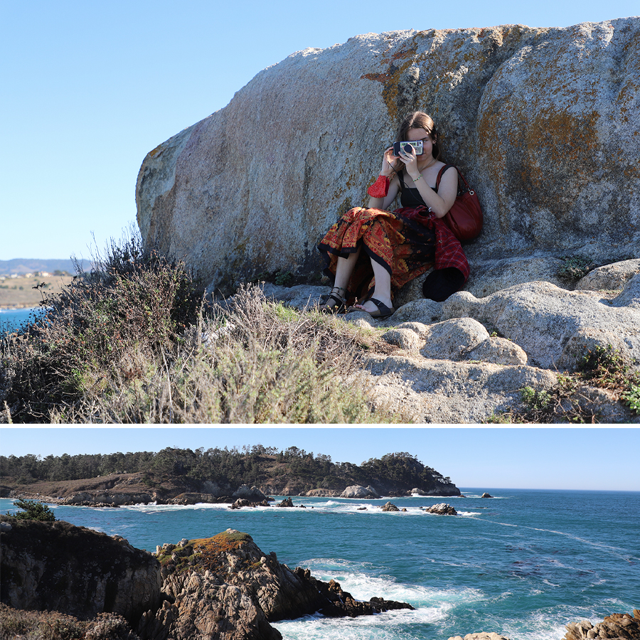 we-could-have-sat-there-forever-point-lobos