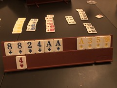 Playing Rummy with my wife 25/365