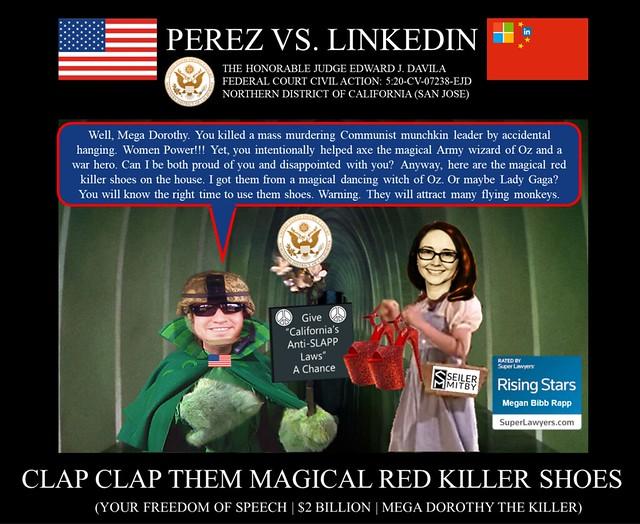 09 Alejandro Evaristo Perez vs Linkedin Corporation - US Federal Court Case -  The Army Wizard of OZ - $2BN Bill Gates Ryan Roslansky MS - mega dorothy megan bibb rapp