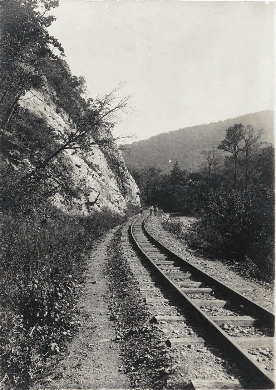 Участок Сучанской узкоколейной железной дороги (4)