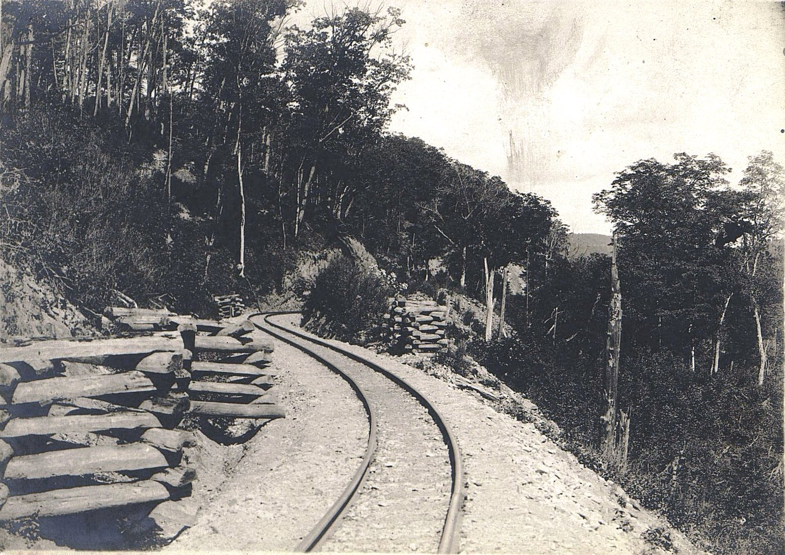 Участок Сучанской узкоколейной железной дороги (1)