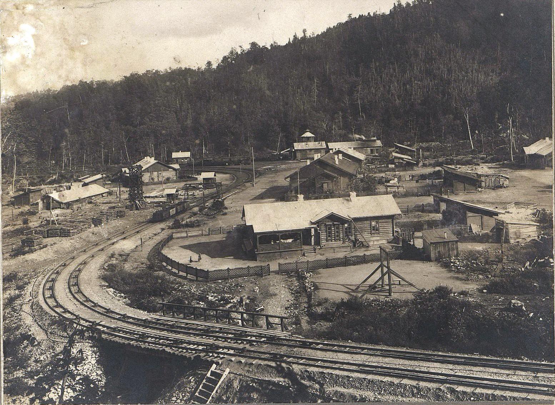 Станция Фанза Сучанской узкоколейной железной дороги - начало участка с применением канатной тяги.