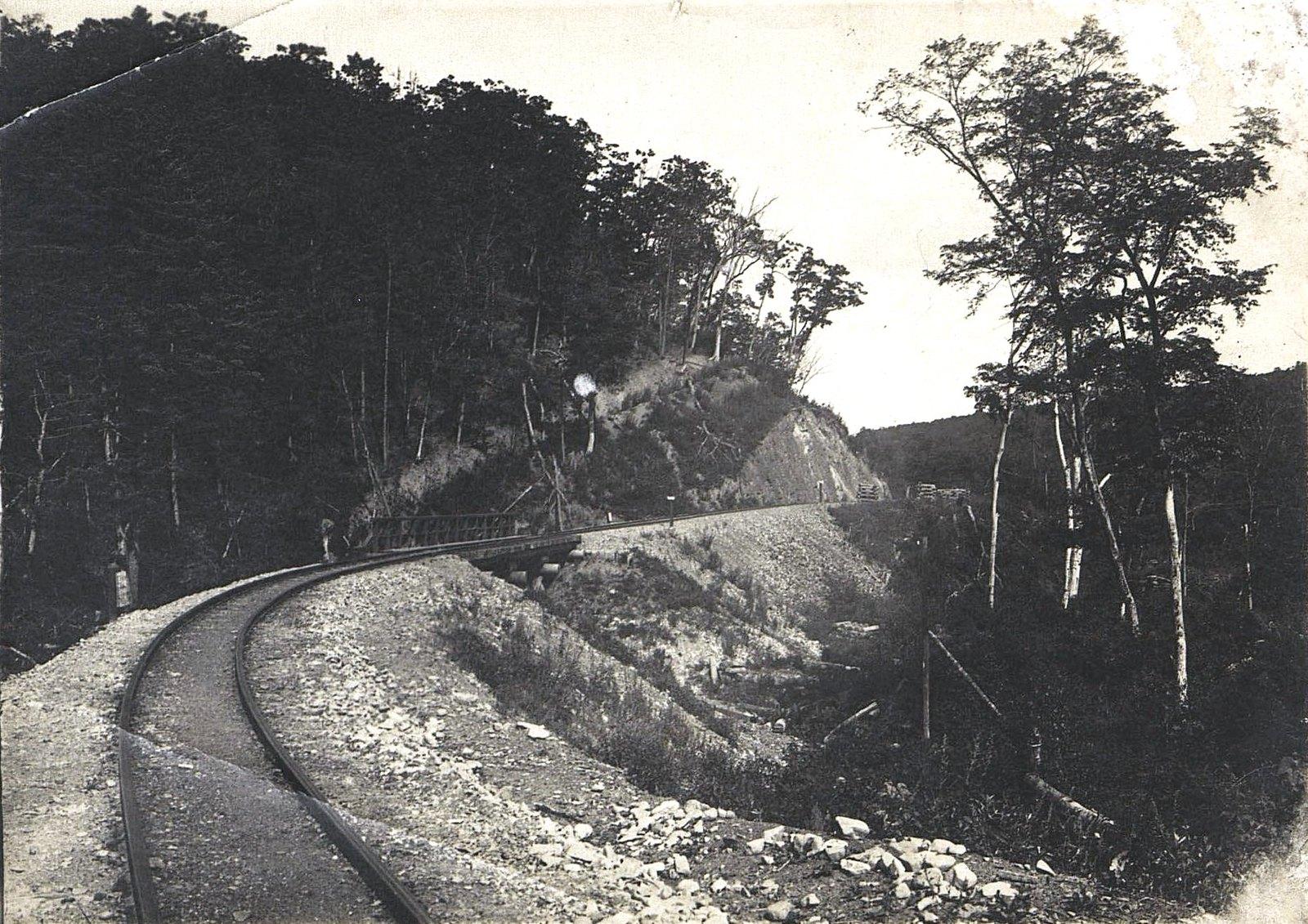 Участок Сучанской узкоколейной железной дороги