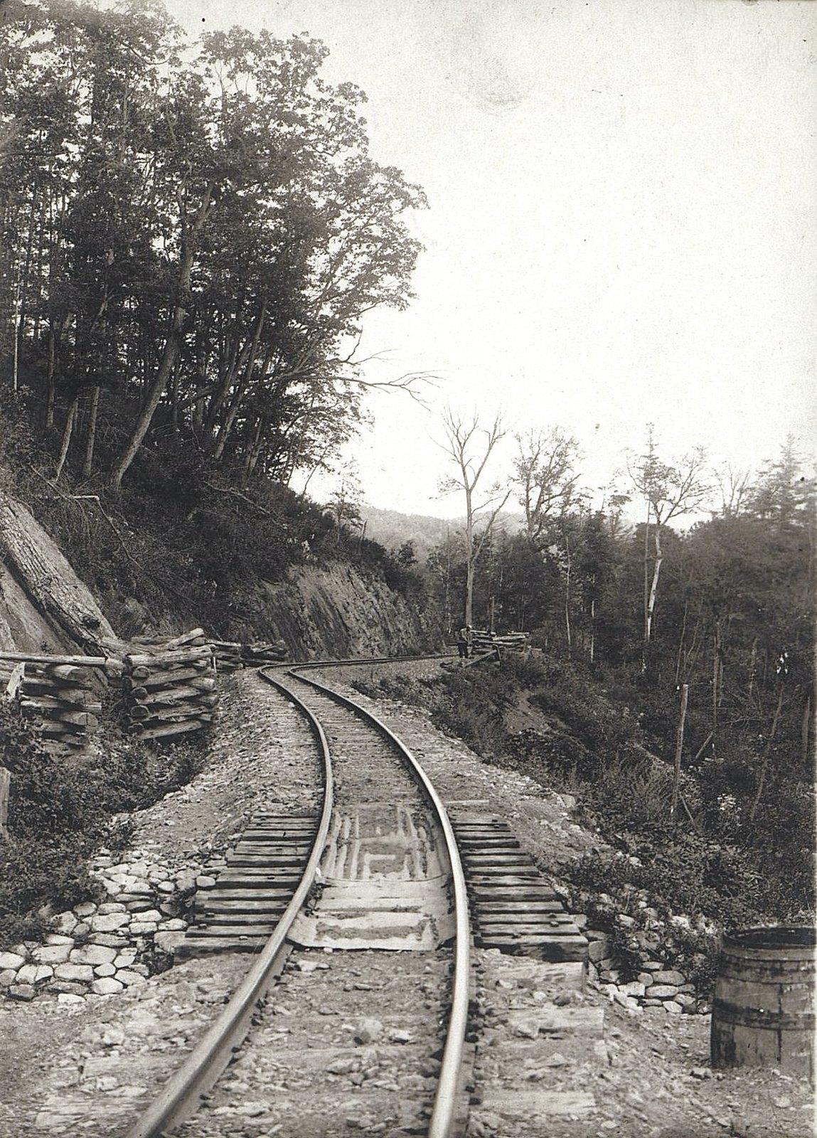 Участок Сучанской узкоколейной железной дороги (3)