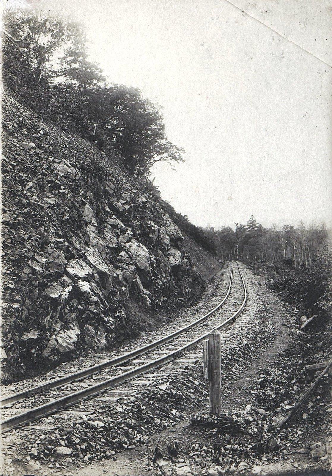Участок Сучанской узкоколейной железной дороги (2)