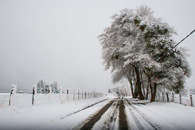Rural Snowy Road (in Explore)
