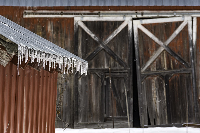a closer look at a great old barn on Shearer Rd. (in explore)