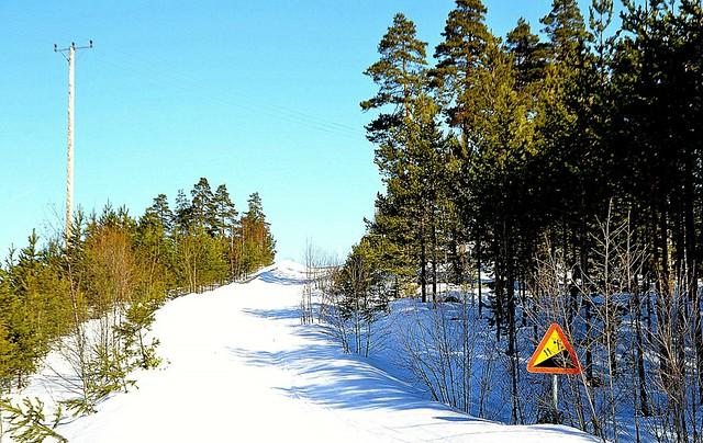 Vinter i Hälsingland 24.