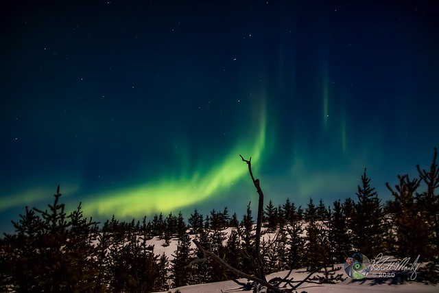 SM7_3325a Northern Lights Wtrmk