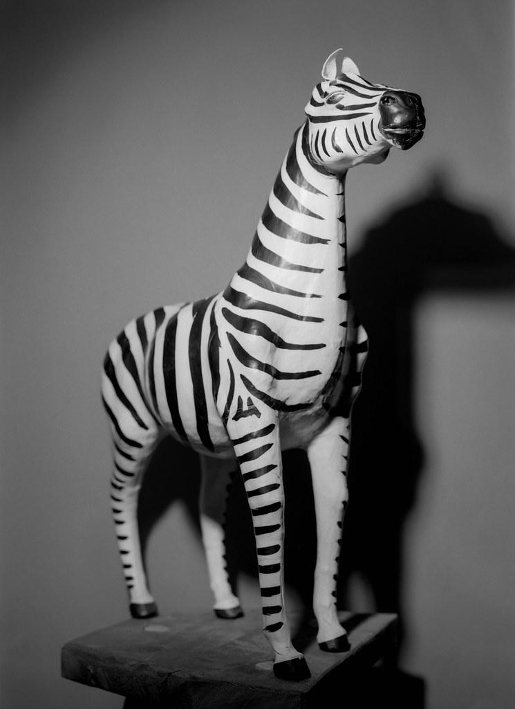 Day 6 (6th Jan) - Stripey Horse!