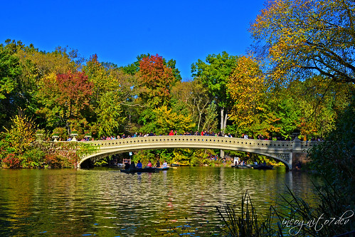 Beautiful Bow Bridge & The Lake Central Park Manhattan New York City NY P00784 DSC_1393