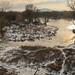 021Jan 16: Morava River Winter Sun