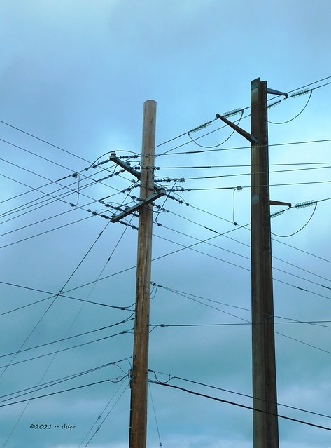 Busy Wires & Poles ~ Cloudy But Soft Skies