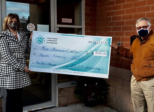 women's shelter cheque photo December 10 2020