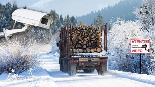 Cerem sistem de monitorizare video a transporturilor de lemn, accesibil publicului larg