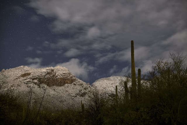 Overnight snow in the foothills in Tucson AZ