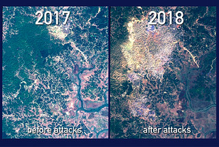 An optical satellite image from the Sentinel-2 satellite of the Rakhine state of Myanmar before and after the government attacks in August 2017. (European Space Agency)