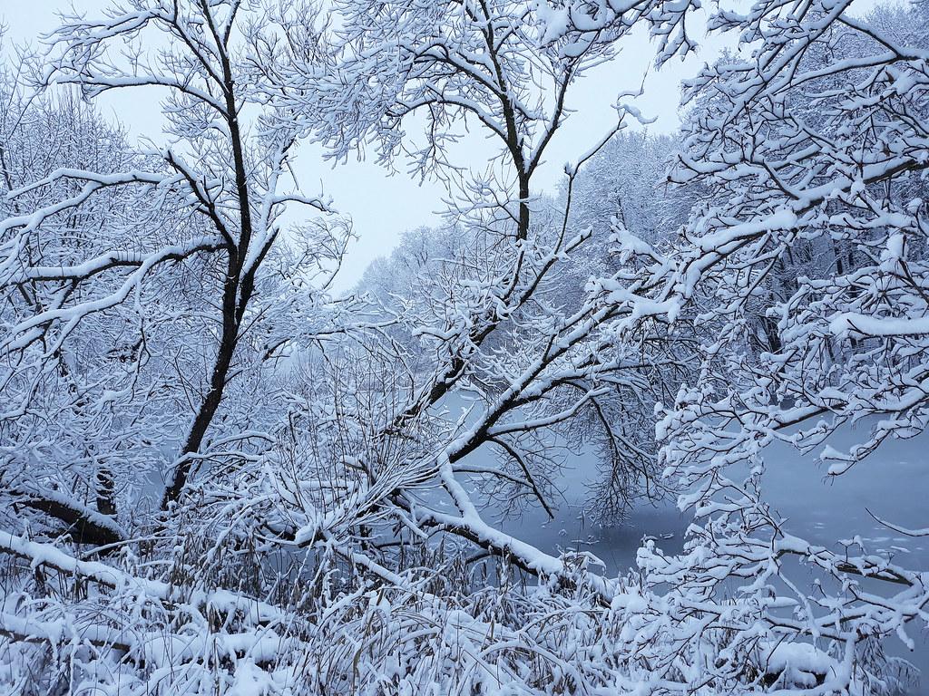 Winter Impressions 46