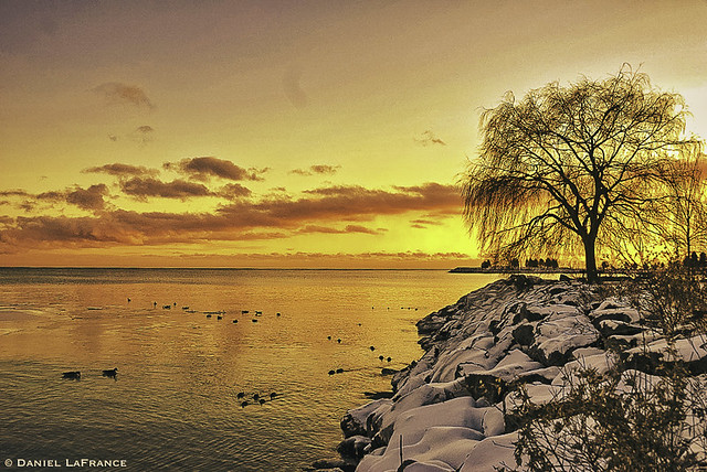 Sunset at Bluffers Park (DOL-A-1798)