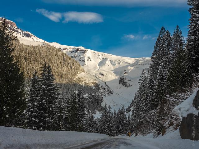 Road to the Nisqually Glacier