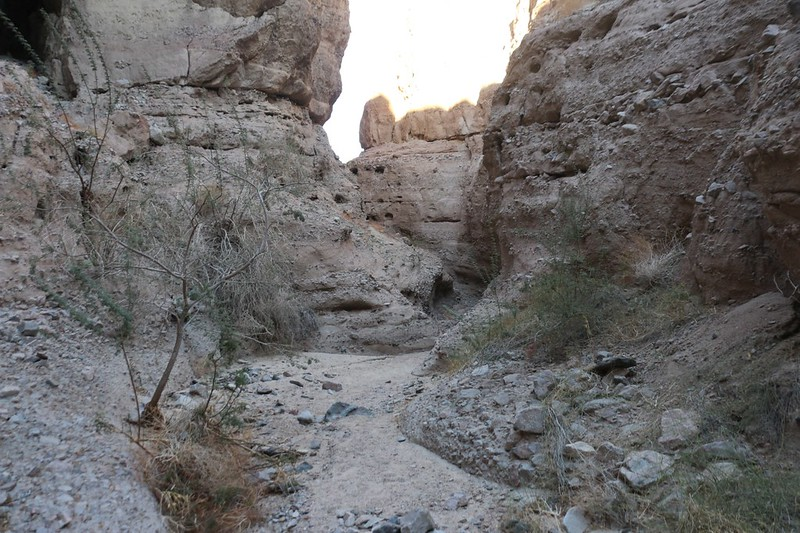 Hiking up through the easy canyon at Mecca Hills Wilderness
