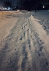 Dramatic snowy night walk