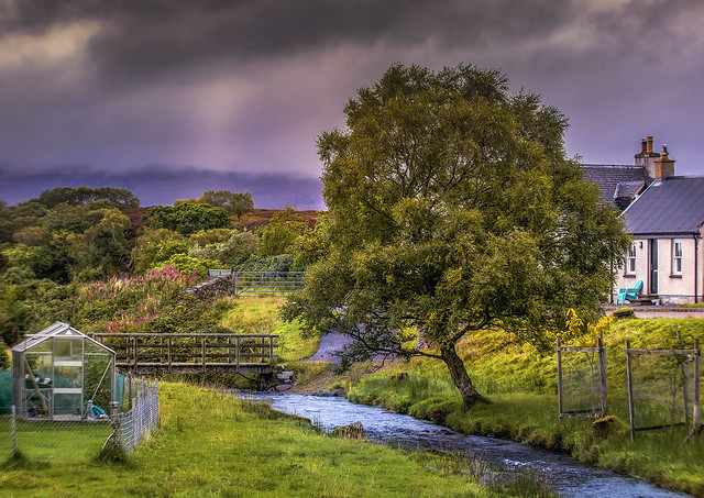 Afternoon in the Scottish Countryside (Explored)