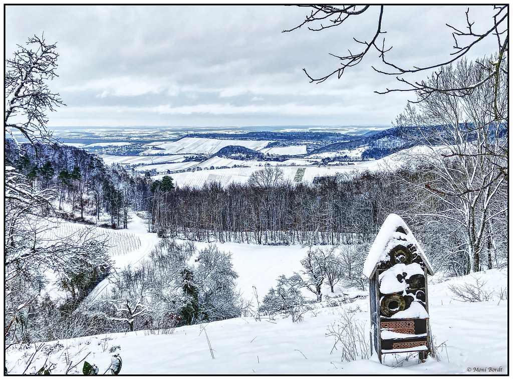 Snow in the Weinsberg Valley