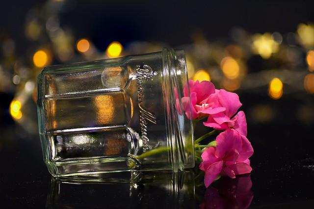 2021-01-27_01-17-58 jarred flower