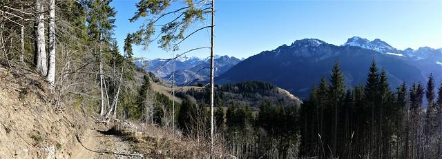 Mont d'Hermone (1413m)  France
