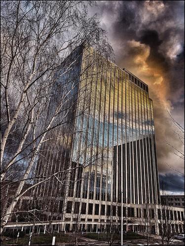 windowwednesday highrise reflection sunset clouds tree pbwa 12127 dramatic