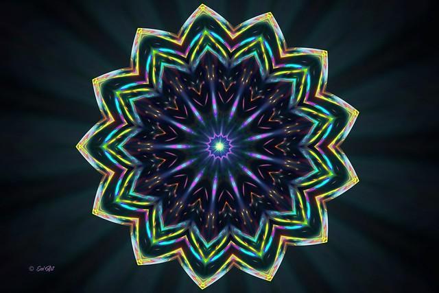 Fleur Cosmique - Cosmic Flower